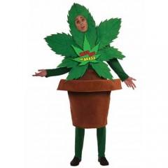 Χαρούμενο Φυτό αστεία στολή ενηλίκων σε γλάστρα που φτιάχνει κεφάλι